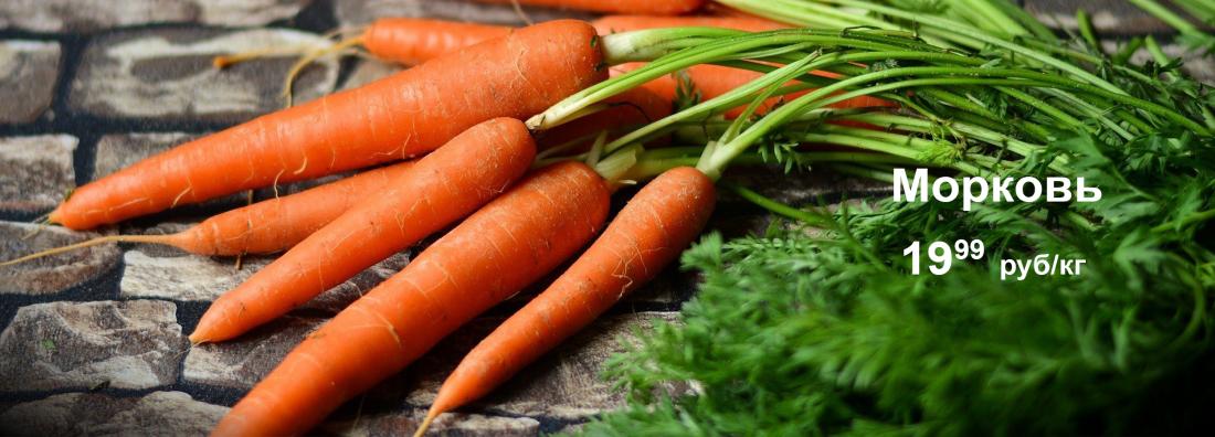 морковь 19,99